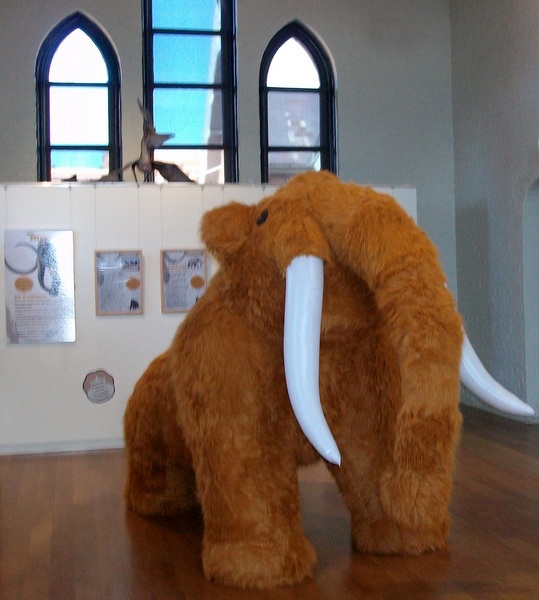 2018 year end Inflatable Mammoth - Australian Fossil and Mineral Museum