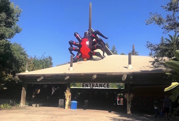 Inflatable Shapes - Fresno Chaffee Zoo Spider