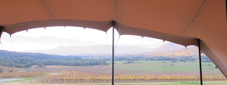 Stretch freeform tents vineyard and winery weddings